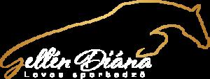 Gellén D. Logo