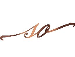 Sági O. logó